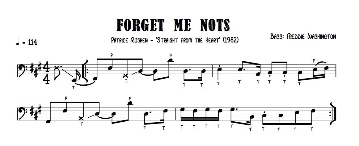 GOTW Forget Me Nots